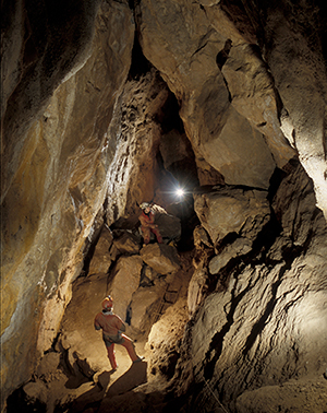 a barlangrol